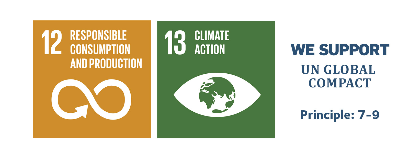 12. Responsible consumption and production. 13. Climate action.