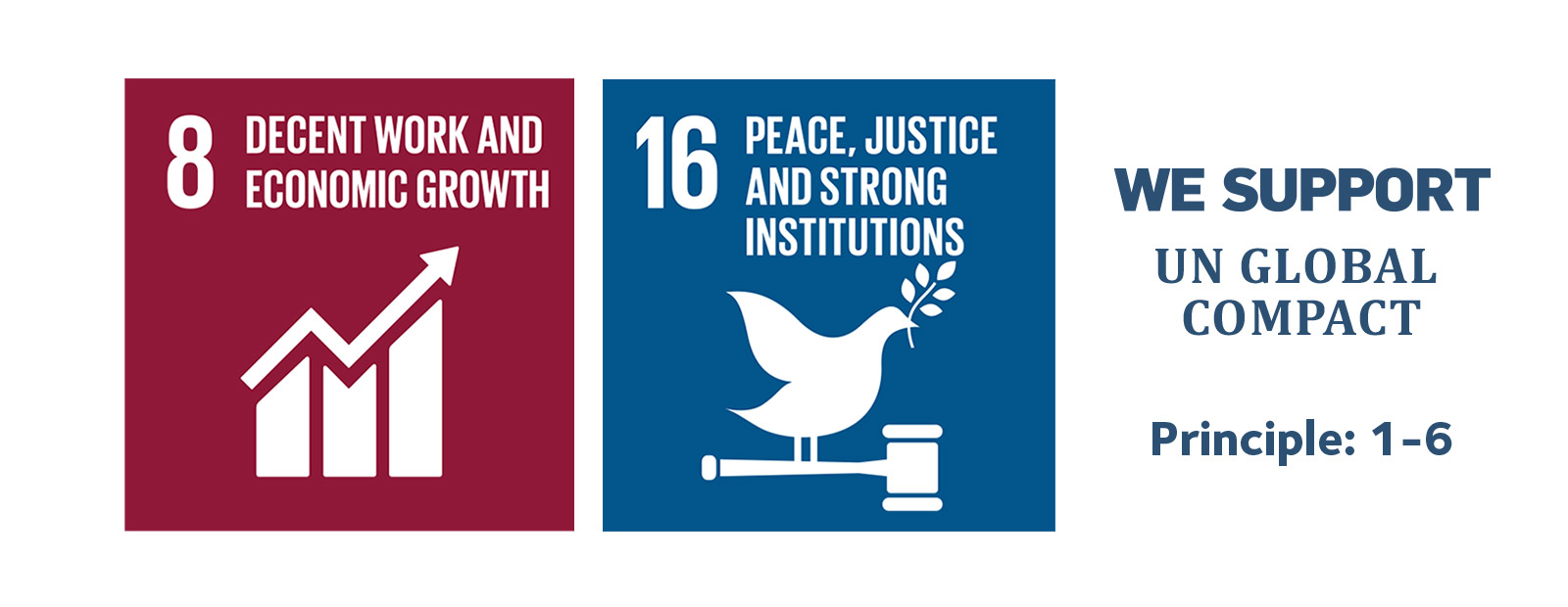 8. Decent work and economic growth. 16. Peace, justice and strong institutions.